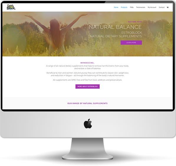 web design screenshot on desktop computer