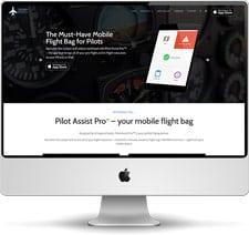 Pilot Assist Pro